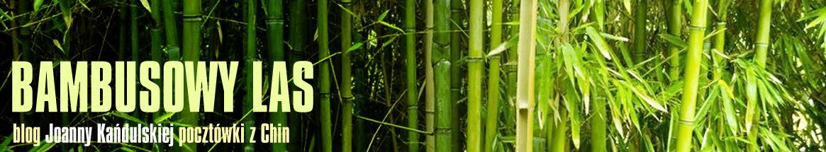 Bambusowy Las - Joanny Kańdulskiej pocztówki z Chin